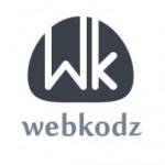 Webkodz consultants Pvt. Ltd.