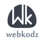 Webkodz consultants Pvt. Ltd.